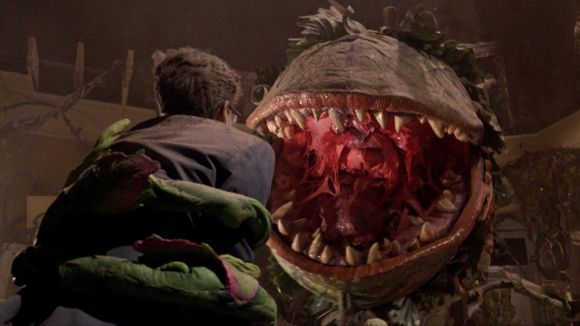 little shop of horrors 01